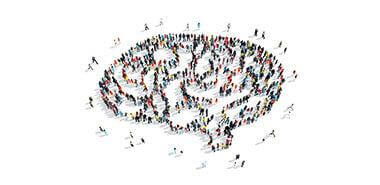 About the Brain Injury Association of America